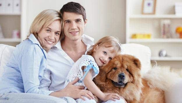 Wills & Trusts dog-young-family Direct Wills Warminster Common